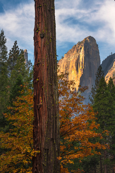 Colors Fanning Their Wings With The Cathedral Rocks - Lower Yosemite Valley, Yosemite National Park, CA