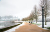 A Winter Morning Around Capital Lake - Capital Lake, Olympia, WA