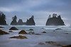 Shi Shi Beach Distant Sea Stacks - Shi Shi Beach, Point Of Arches, Olympic National Park, Washington