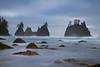 Shi Shi Beach Distant Sea Stacks - Shi Shi Beach, Point Of Arches, Olympic National Park, Washington
