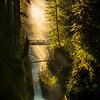 Sol Duc Falls Bridge From Ledge - Sol Duc Falls, Olympic National Park, WA
