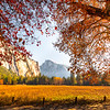 Sunburst Through Autumn Foliage - Lower Yosemite Valley, Yosemite National Park, CA