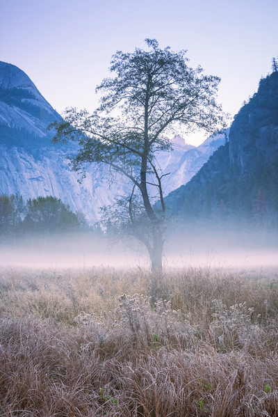 A Serenity Morning In Yosemite - Lower Yosemite Valley, Yosemite National Park, CA