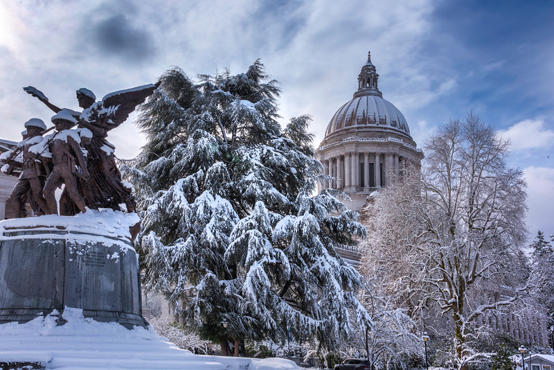 Someone Looking Over The Capital In Snow
