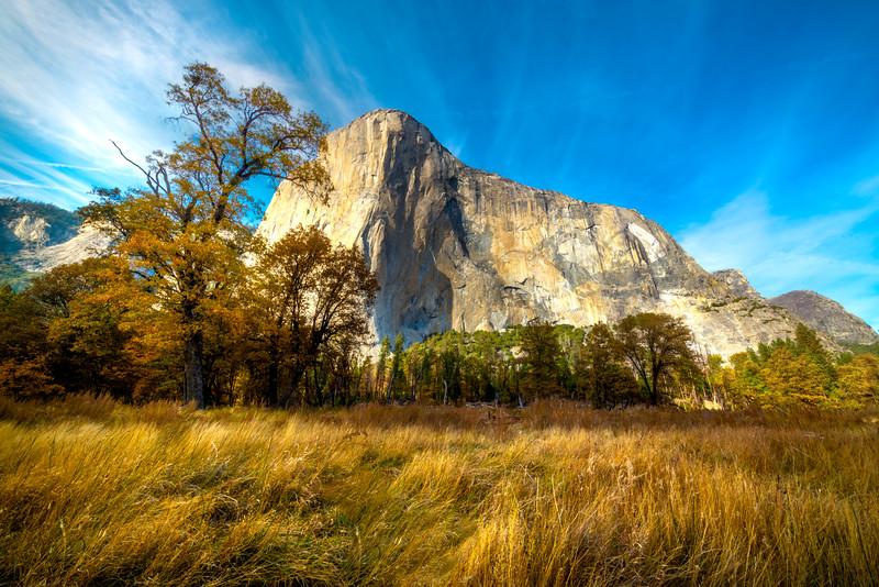 El Captain In Afternoon Light From El Cap Meadow - Lower Yosemite Valley, Yosemite National Park, California
