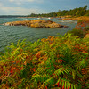 Autumn Foliage Along Shoreline Of Georgian Bay - Algonquin Provincial Park, Nipissing, South Part, Ontario, Canada