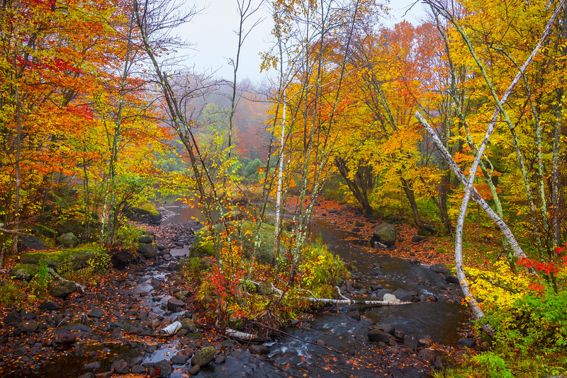 An Hidden Secret Runoff Of Autumn - Vermont