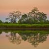 Reflections Along The River At Sunset Kaziranga National Park, Assam, North-Eastern India