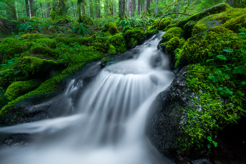 In Close On Cascade Falls Sol Duc Falls, Olympic National Park, WA