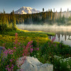 Second Reflection Lake In Mist - Reflection Lakes, Mt Rainier NP, WA