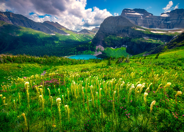 Beargrass Meadows Above Grinnell Lake - Grinnell Glacier Trail, Glacier National Park, Montana