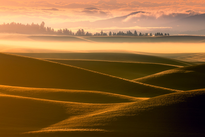 Rolling Layers Of Summer Dust and Mist - Eid Road, Palouse, Idaho