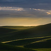 Rolling Light Over The Palouse Hills - The Palouse Region, Washington