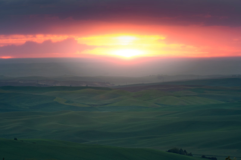 Sunset Glow Over The Green Hills - The Palouse Region, Washington