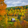 In The Center Of All The Autumn Action - Vermont