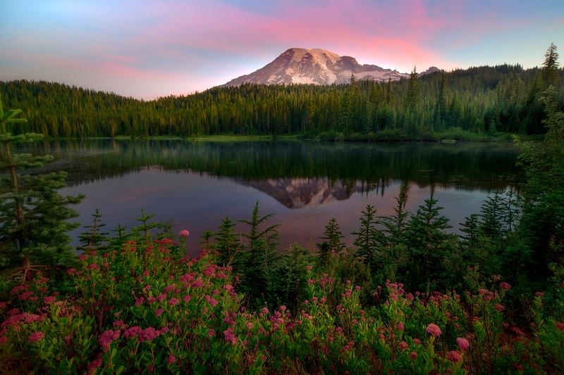 Reflection Lakes and Pink Heather - Reflection Lakes, Mt Rainier NP, WA