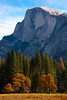 Half Dome From Curry Meadow_ - Lower Yosemite Valley, Yosemite National Park, California