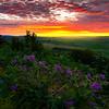 Purple Heaven On Top Of Steptoe Butte - Steptoe Butte State Park, Palouse, WA