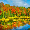 Fall Color Flashbacks Along The Pond