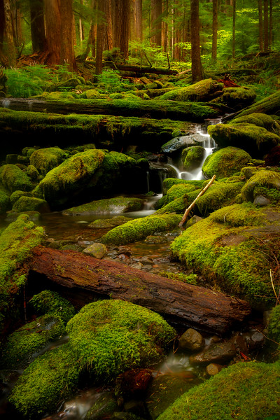 - Sol Duc Falls, Sol Duc Valley, Olympic National Park,, Washington