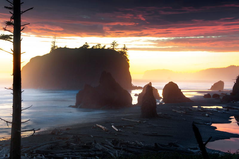 Overlooking Ruby Beach From Above Rialto Beach, Olympic National Park, Washington