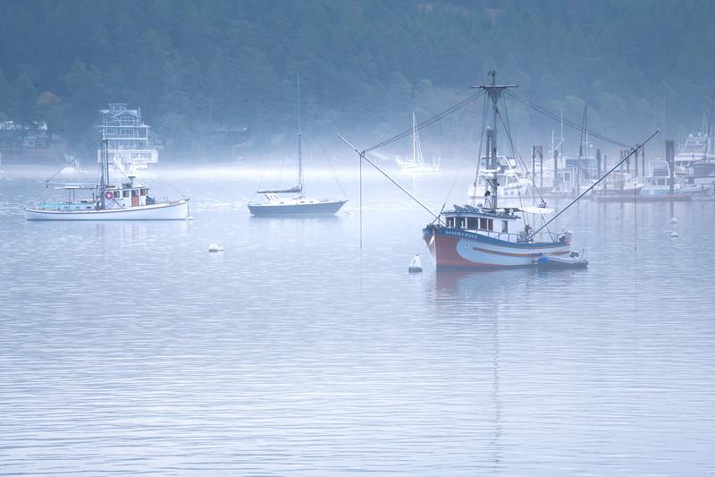 Fog Rolls Into Harbor Bay