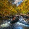 Converging Creeks Up Theh Channel-Ricketts Glen State Park, Benton,  Pennsylvania