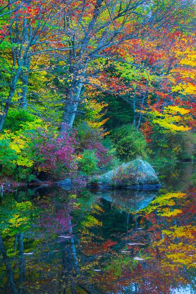 Garden Of Eden Colors - Vermont