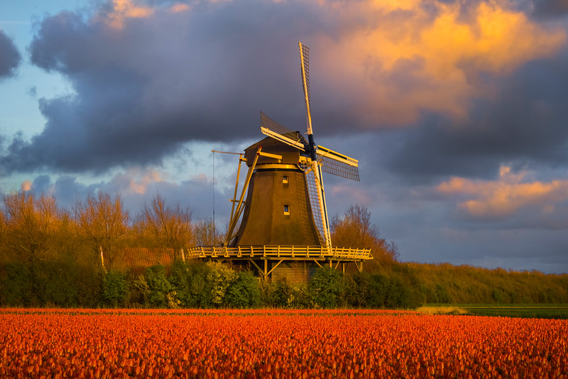 In Close On Windmill At Sunset