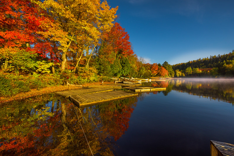 Stunning Autumn Reflections Early Morning In Algonquin - Algonquin Provincial Park, Nipissing, South Part, Ontario, Canada
