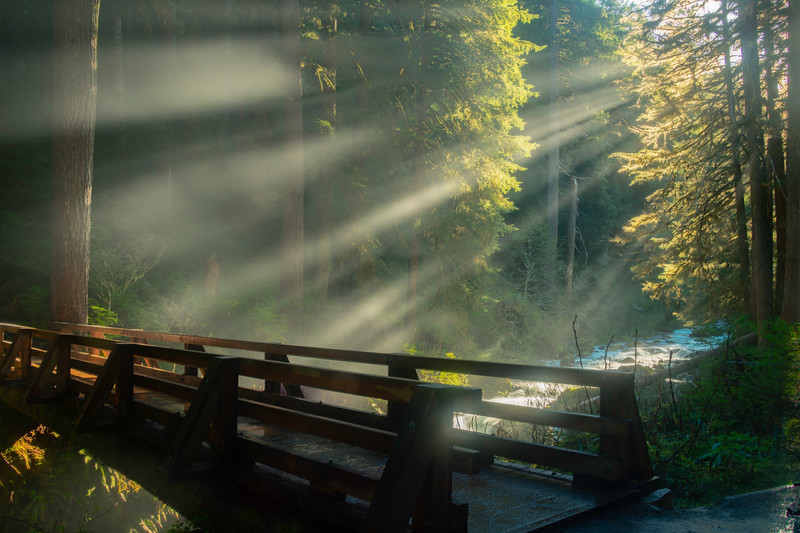 Sun Rays Coming Through Sol Duc Valley Sol Duc Falls, Olympic National Park, WA