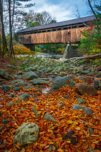 From Inside The Forest Looking At The Covered Bridge - Vermont