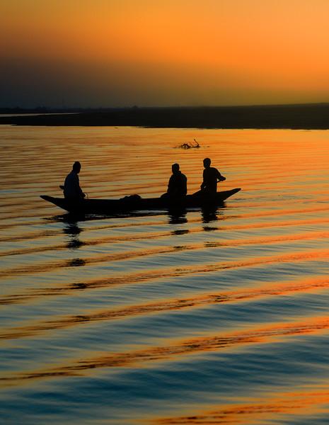 Silhouette Patterns At Sunset Kaziranga National Park, Assam, North-Eastern India