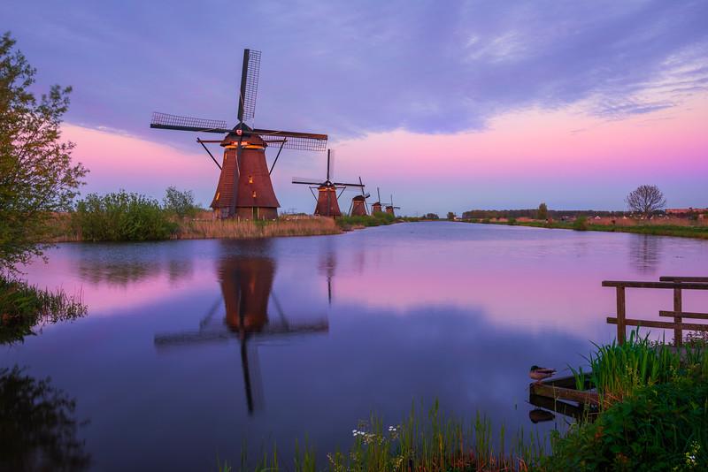 Twilight Pinks Settle Over Kinderdijk Windmills