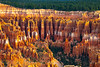 The Glow Of Morning Light On The Canyon Hoodoos - Bryce Canyon National Park, Utah