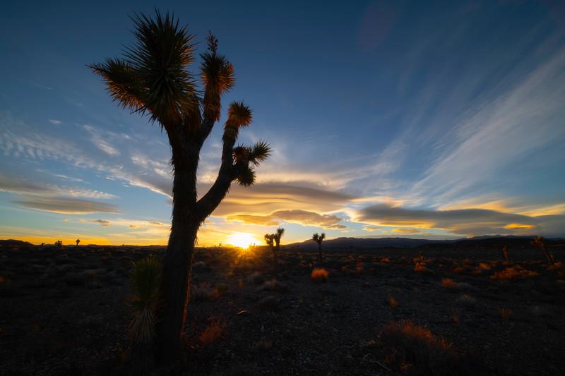 Glory Of Rim Light - Death Valley National Park, Eastern Sierras, California