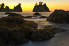 Tide Moving In On Shi Shi - Shi Shi Beach, Point Of Arches, Olympic National Park, Washington