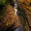 Autumn Paradise Garden Watkins Glen State Park, Finger Lakes Region, Upstate New York, NY