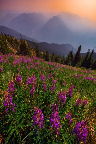 Wildfires Of BC Filling The Valley With Smoke - Idaho Pass, Kootenay Rockies, BC, Canada