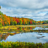 Lost Lagoon Color By Color_30x20