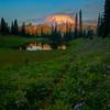 Trail Of Asters Leading To The Lake - Tipsoo Lake, Mt Rainier NP, WA
