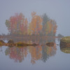 An Island Of Color Immersed In Mist - Vermont