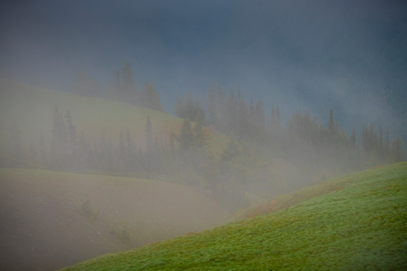 Layers Of Fog And Mist On Hurricane Ridge