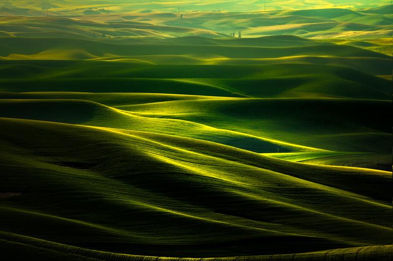 Shades Of Spotlight On The Palouse Hills - Steptoe Butte State Park, Palouse, WA