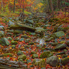 Fall Colors And Running Creeks