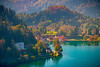 Soft Glow Of Autumn Highlighting Color Of Lake Bled - Lake Bled, Bled, Slovenia