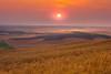 Sunset From Low Level Of Steptoe - Steptoe Butte State Park, Palouse, Eastern Washington