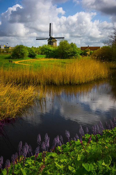 Idyllic Rural Holland Scene