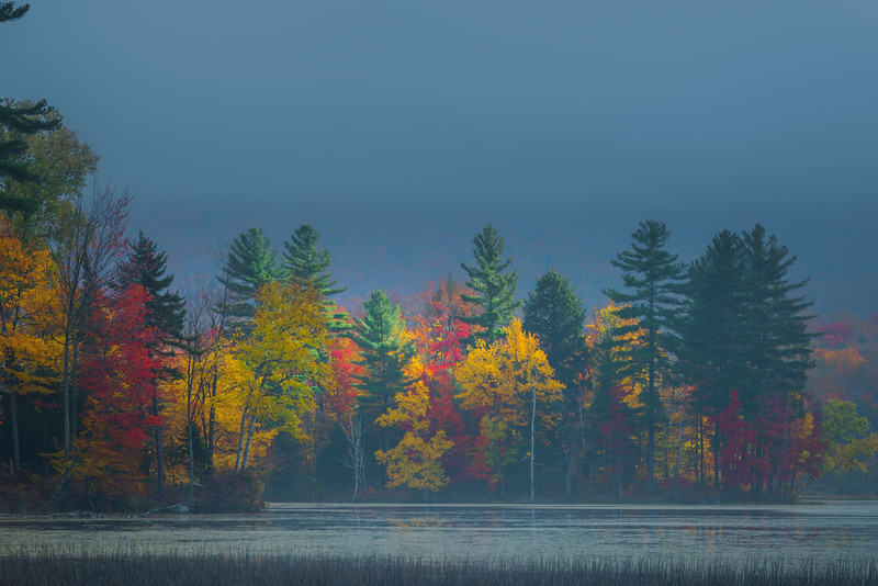 The Morning Calmness On The Lake - Vermont