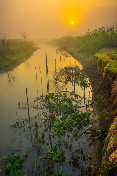 Early Sunrise Over The River Kaziranga National Park, Assam, North-Eastern India